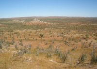 Proposed Roseby Copper Project Site